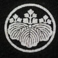 <日向五三桐紋>