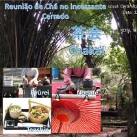 Reunião de Chá no incessante Cerrado