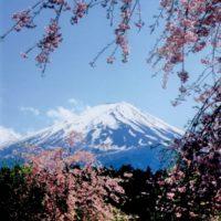 和の心 富士山賛歌