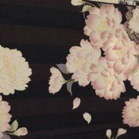 Padrões Japoneses Mon'yô: Flor de Cerejeira